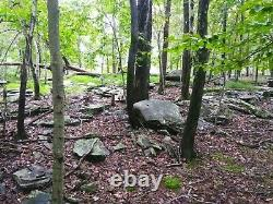 Large Lakefront Pocono Lot. 64 Acre Hunting Fishing Real Estate Pa Land House Ny